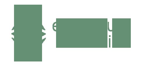 ethereum classic valor