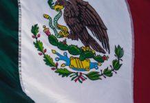 l Mejor Broker Forex en México en 2020