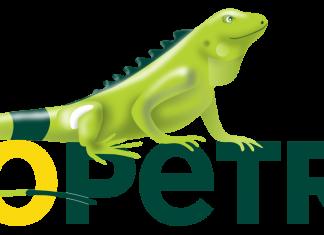 Cómo invertir en acciones de Ecopetrol